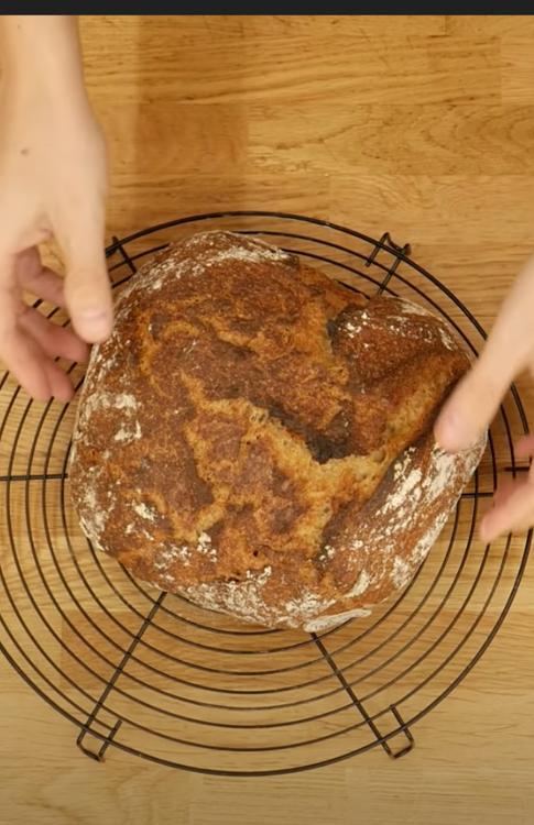 UrDinkel Sauerteig Brot