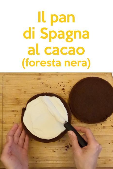 SU RICHIESTA! Pan di Spagna al cacao (foresta nera)